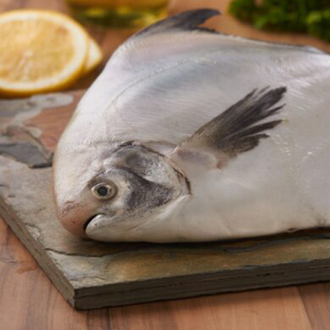 Pomfret (3 Whole fish) (400 gms)