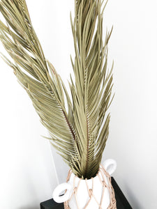 Dried palm leaves, home decor, wedding, events