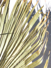 Load image into Gallery viewer, Tulum Palm Leaf