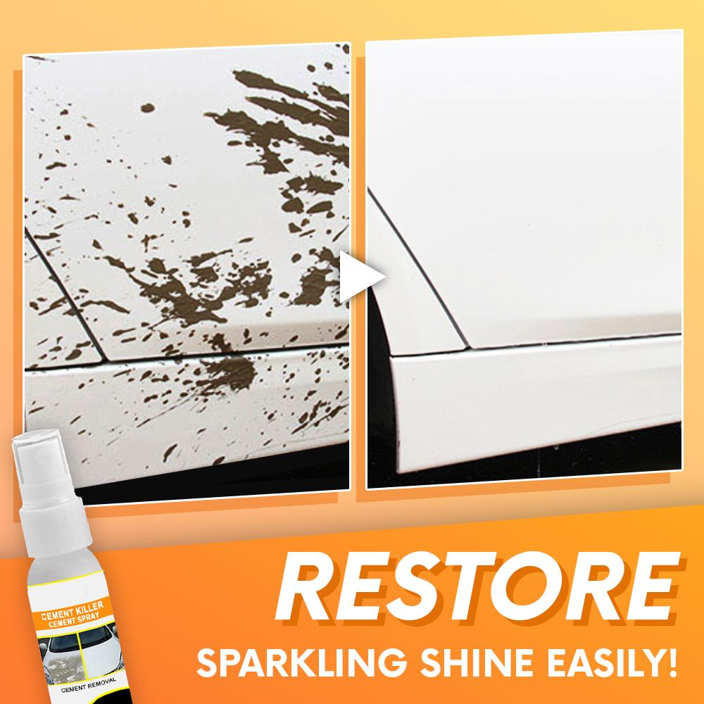 EasyOff Stain & Cement Remover Spray