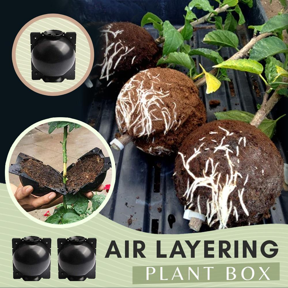 Air Layering Plant Boxes (3PCS)