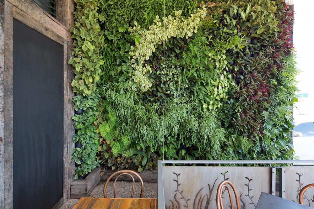 Vertical Garden by Greenwall Solutions using Green4Air vertical green wall system