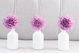 Purple Stemmed Wood Flowers