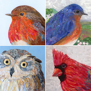 Nature Series Greeting Cards - Set of 4 different bird images