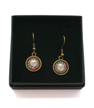 Load image into Gallery viewer, Triskele Design Hand Painted Earrings