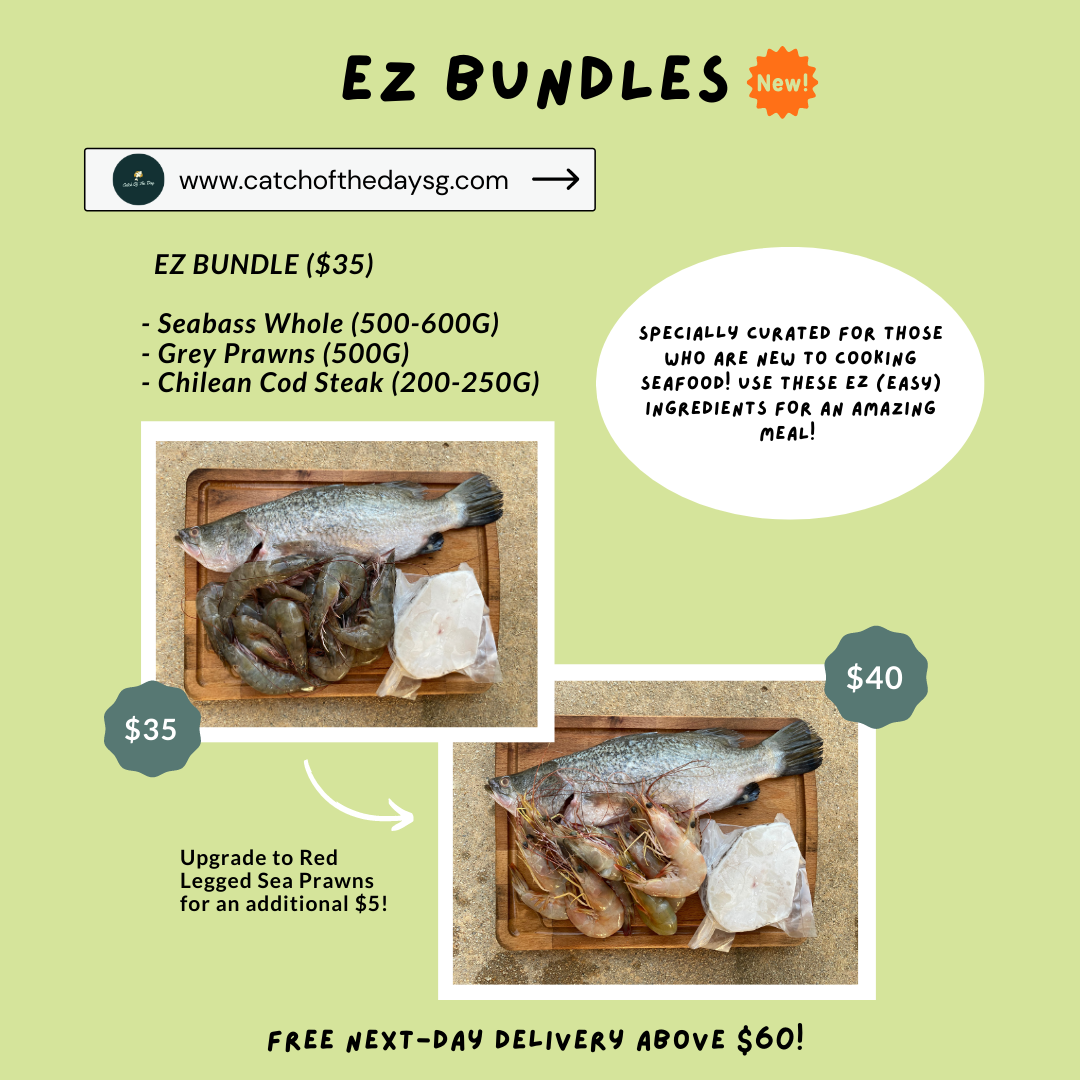 EZ Bundle (2 variants available)