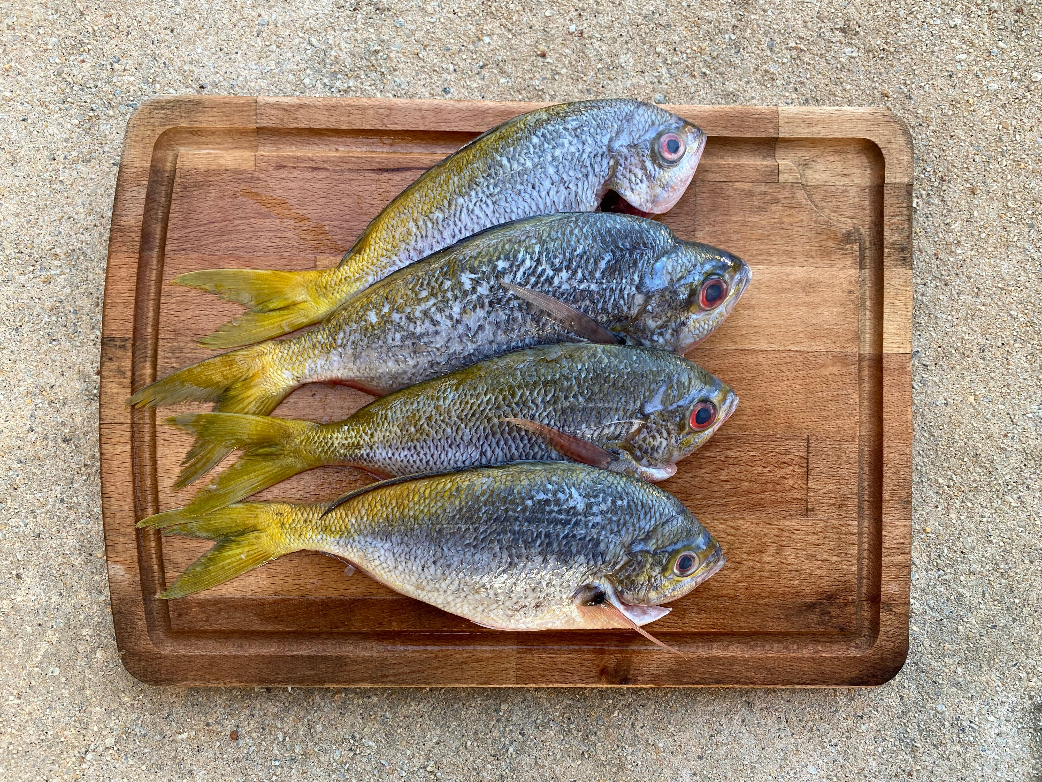Yellowtail Fish/Potato Fish (1KG) 黄尾鱼/番薯鱼