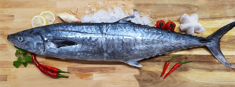 Batang (Mackerel) 巴当鱼 (Whole) (1.5-2KG) - Catch Of The Day Singapore