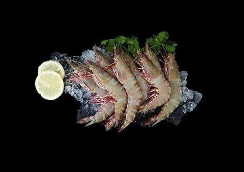 Ang Kar Prawns 鲜红脚虾 (500G) - Catch Of The Day Singapore