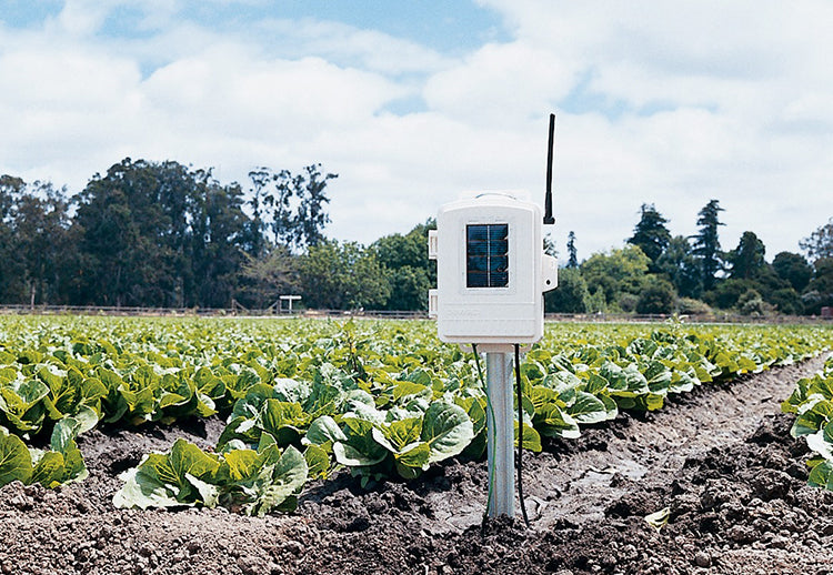 Davis Leaf & Soil Moisture/Temp Station 6345NZ