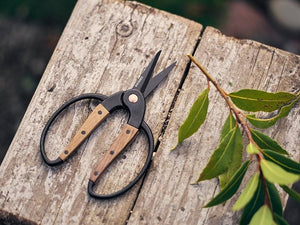 Small Walnut Scissors - T E R R A