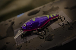 Fishing Baits and Lures
