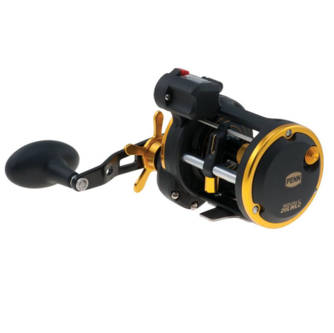 Penn Squall Level Wind Reel with Line Counter SQL20LWLC