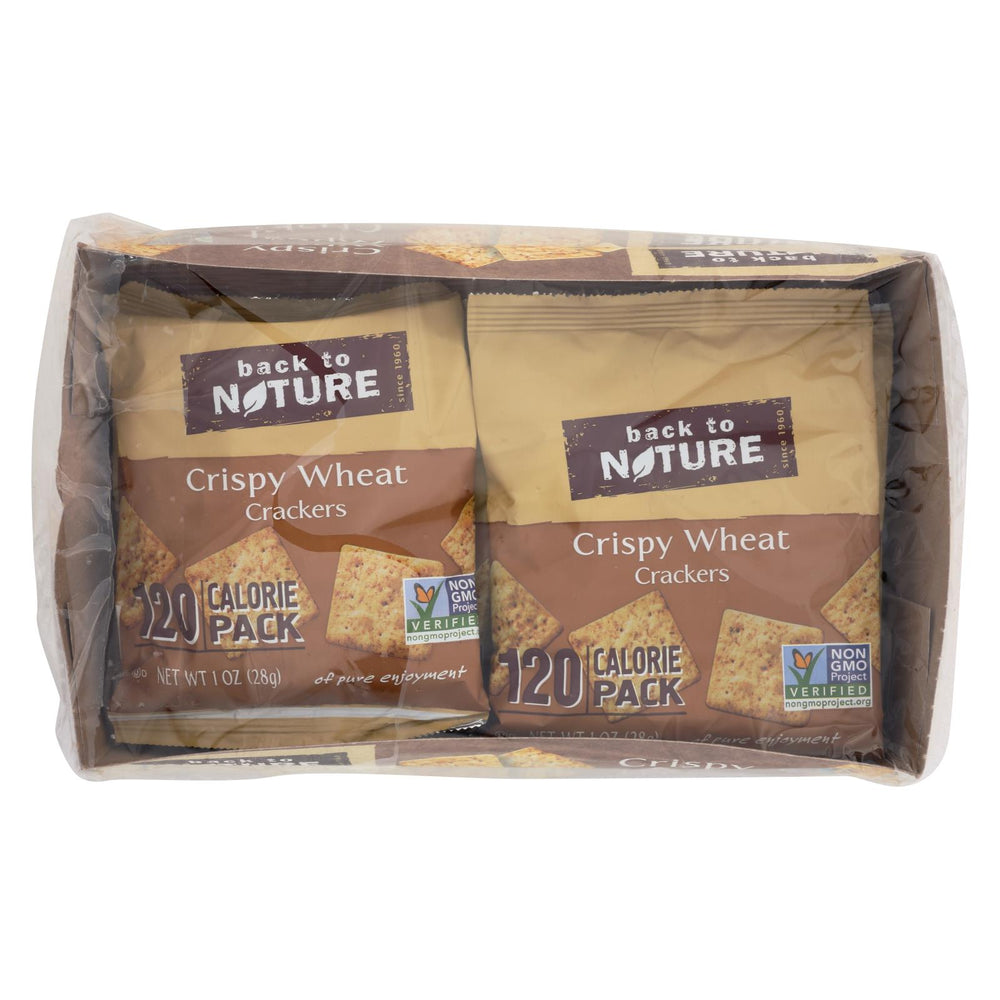 Back To Nature Crispy Wheat Crackers - Safflower Oil And Sea Salt - Case Of 4 - 1 Oz.