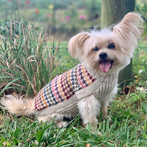 Artesana Dog Sweater