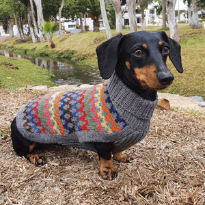 Load image into Gallery viewer, Crossroads Dog Sweater
