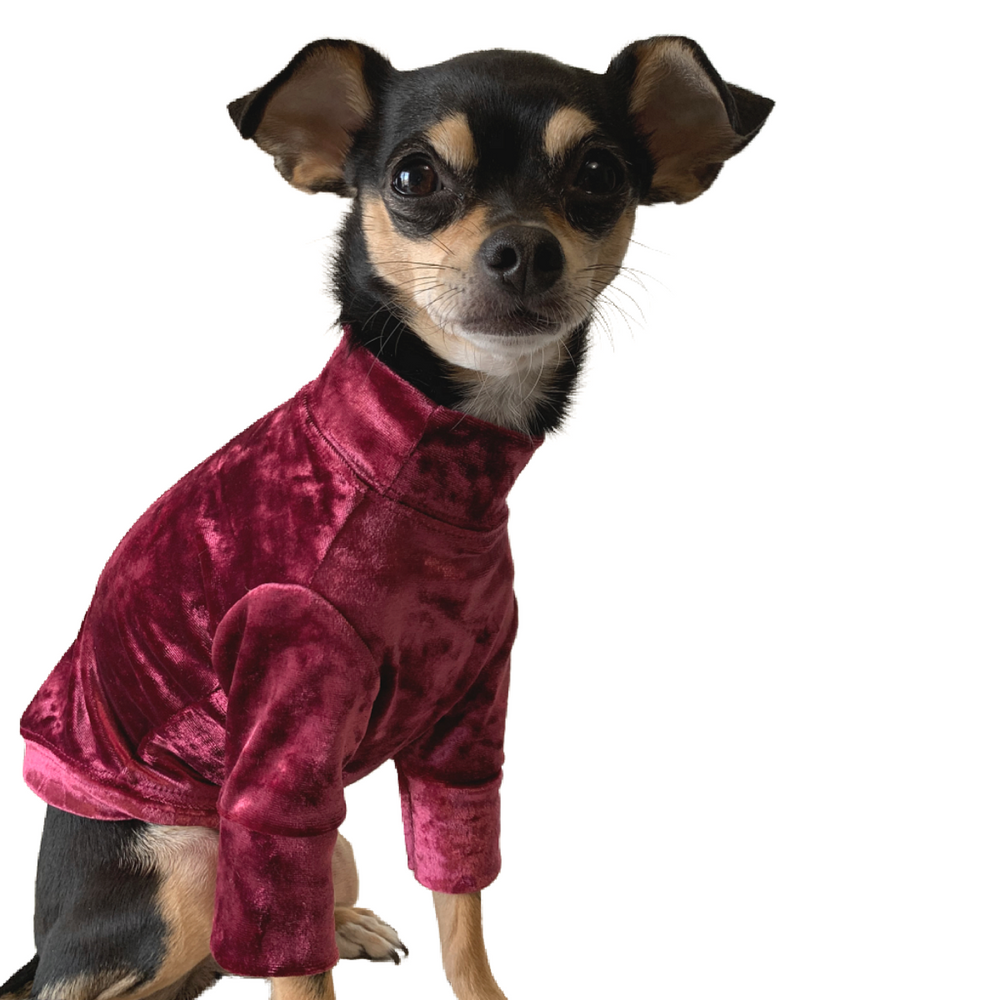 Crushed Velour Long Sleeve Dog Top in Cranberry