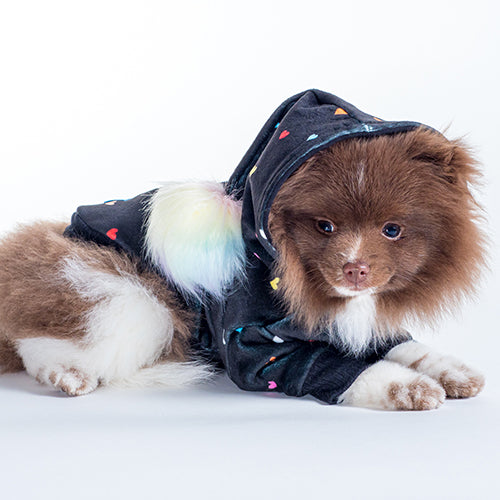 Le Chien Bleu Rainbow Heart Dog Hoodie Side by Fetch Shops