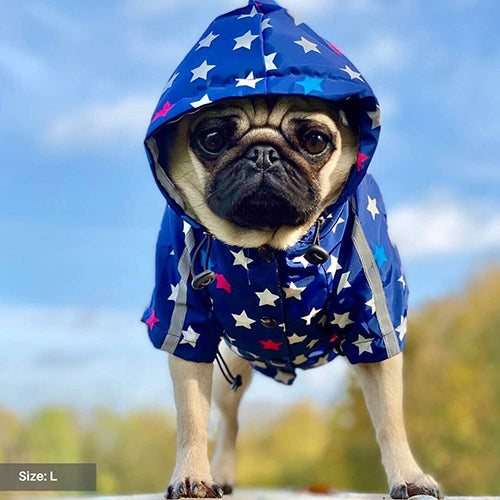 Load image into Gallery viewer, All Star Reflective Dog Raincoat