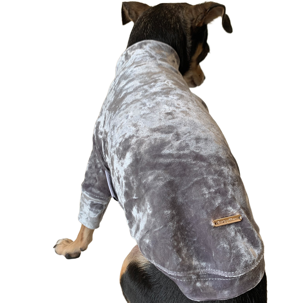 Load image into Gallery viewer, Crushed Velour Long Sleeve Dog Top in Silver