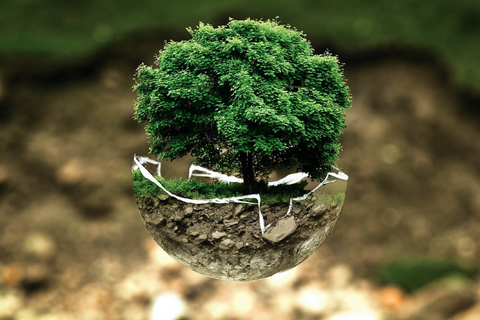 aring-for-the-environment-is-caring-for-our-future-generations
