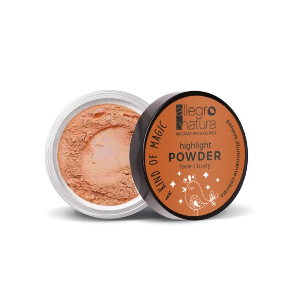 Highlighting Powder Sunshine Bronze