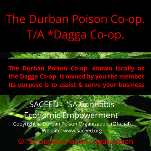 A Golden opportunity for a handful of individuals willing to invest from $1000.00 (equity) directly in the Durban Poison Organization. Durban Poison Organization.