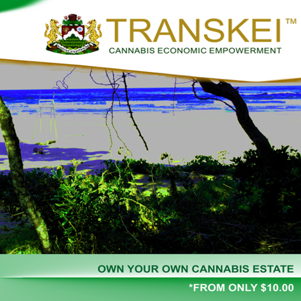 The Transkei Group™ THC, Transkei Health Care™