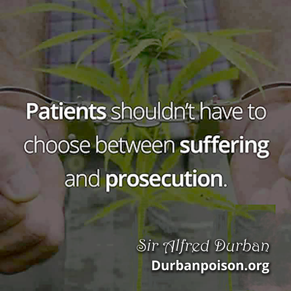 Durban Poison ZA™ (The Brand) Copyright © Durban Poison Organization.  Official Websites: www.durbanpoisonza.com  www.durbanpoison.org (Not for Profit)