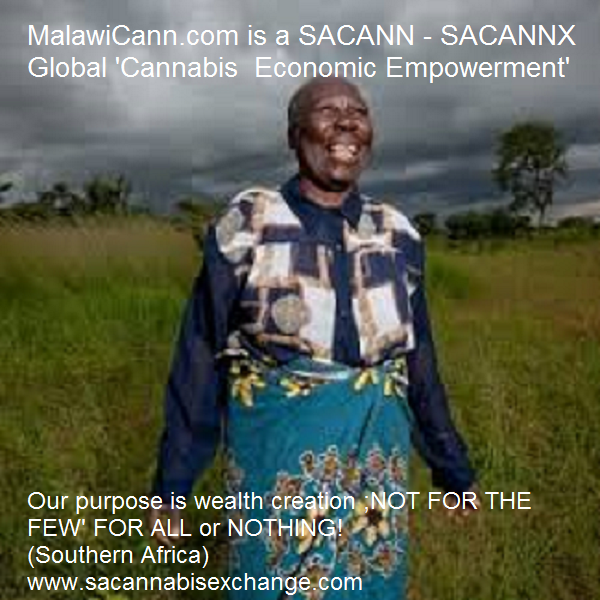 Malawi Cobb *(Medical) Cannabis MalawiCann.com - Luxury Cannabis (Highest Grade) - T&C may apply but we will assist you! Southern Africa (SA) Cannabis Exchange Email: 1@canex.co.za