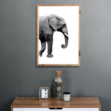 Lade das Bild in den Galerie-Viewer, Elefant