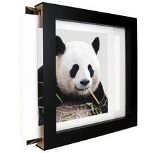 Lade das Bild in den Galerie-Viewer, Happy Panda