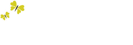 Amica Bridal Boutique