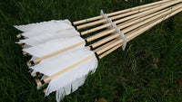 Re enactment battle arrows
