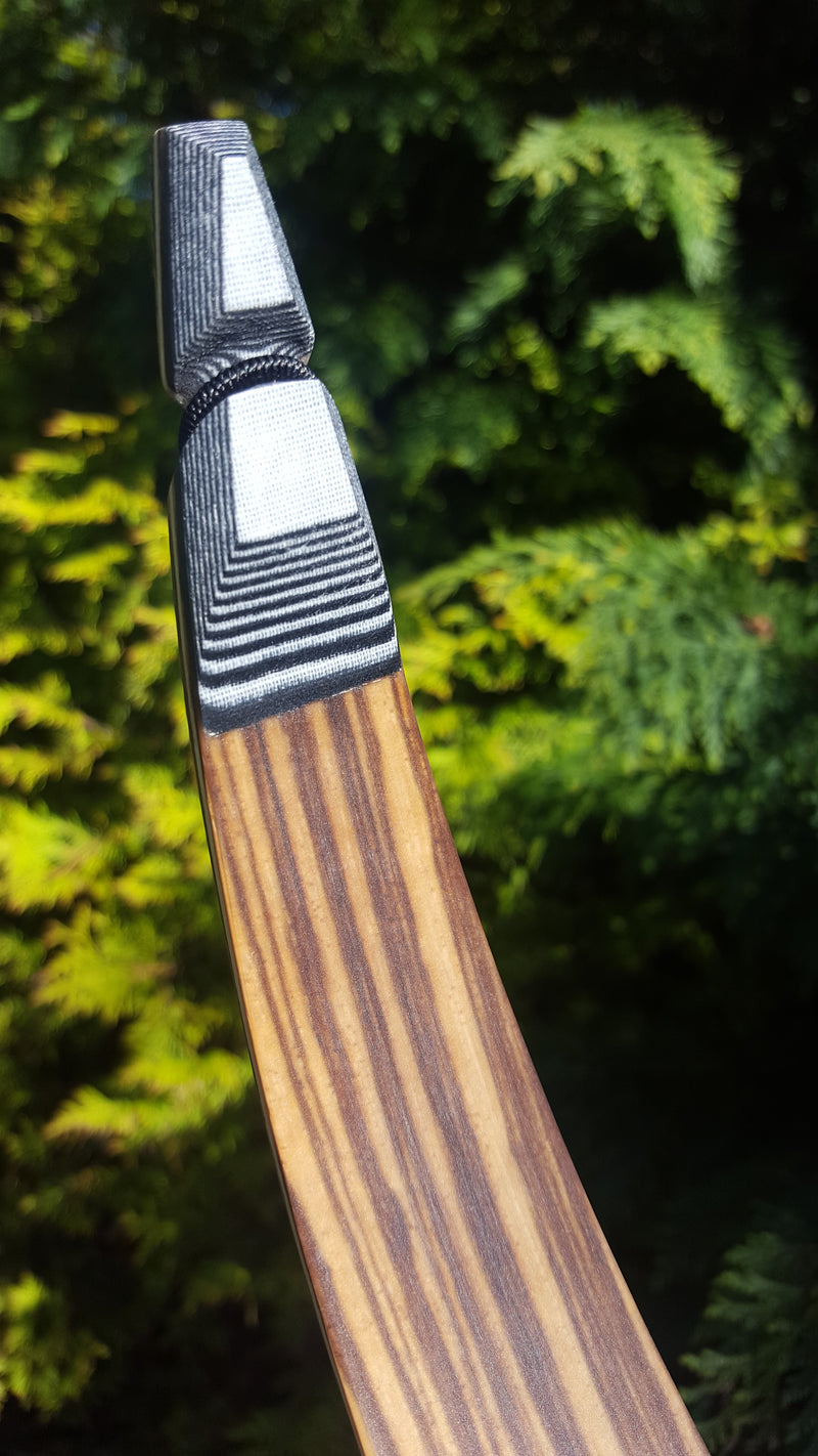 Kaiser Pena recurve limbs