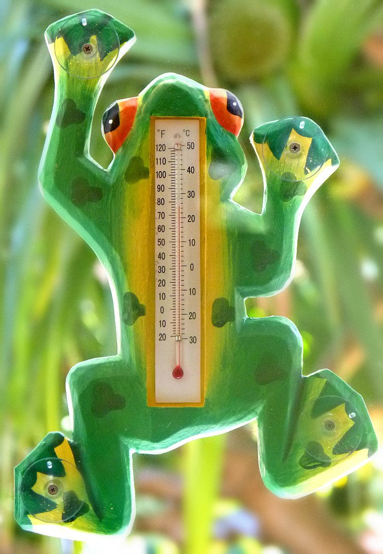 Light Green Frog Thermometer