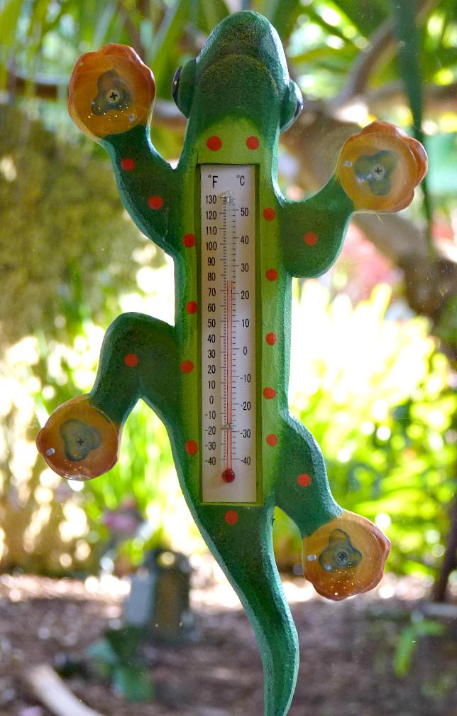Green Gecko Thermometer