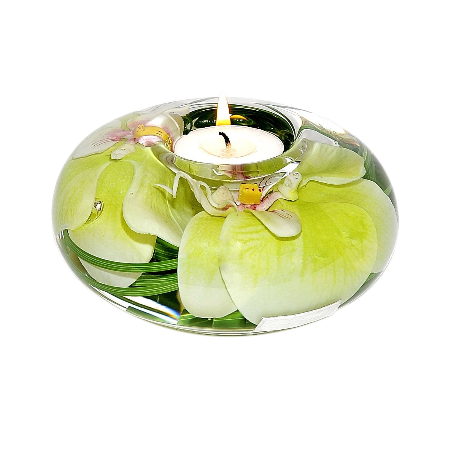 Green Phalaenopsis Tea Light Holder (Large)