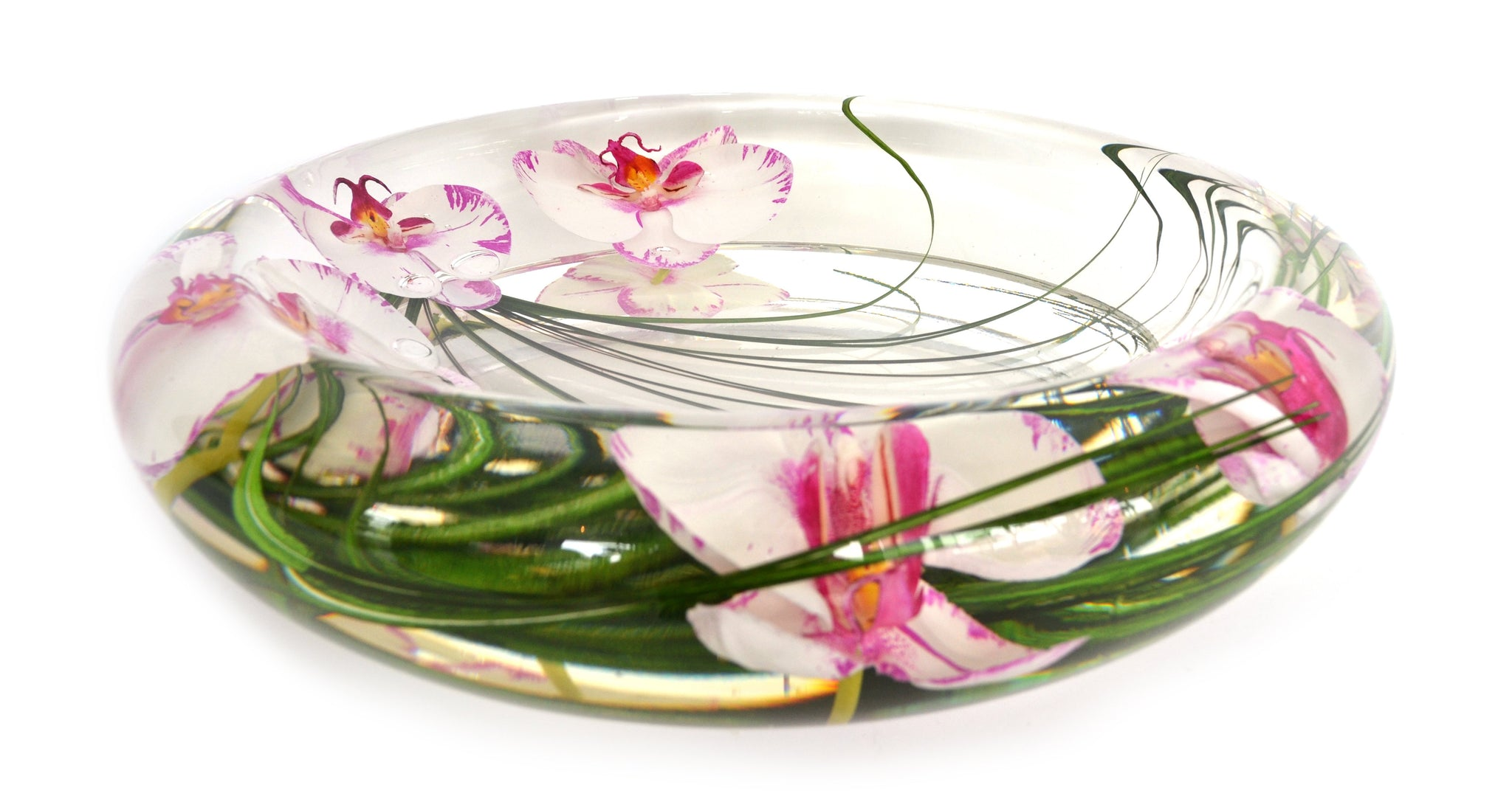Pink White Phalaenopsis Bowl (Large)
