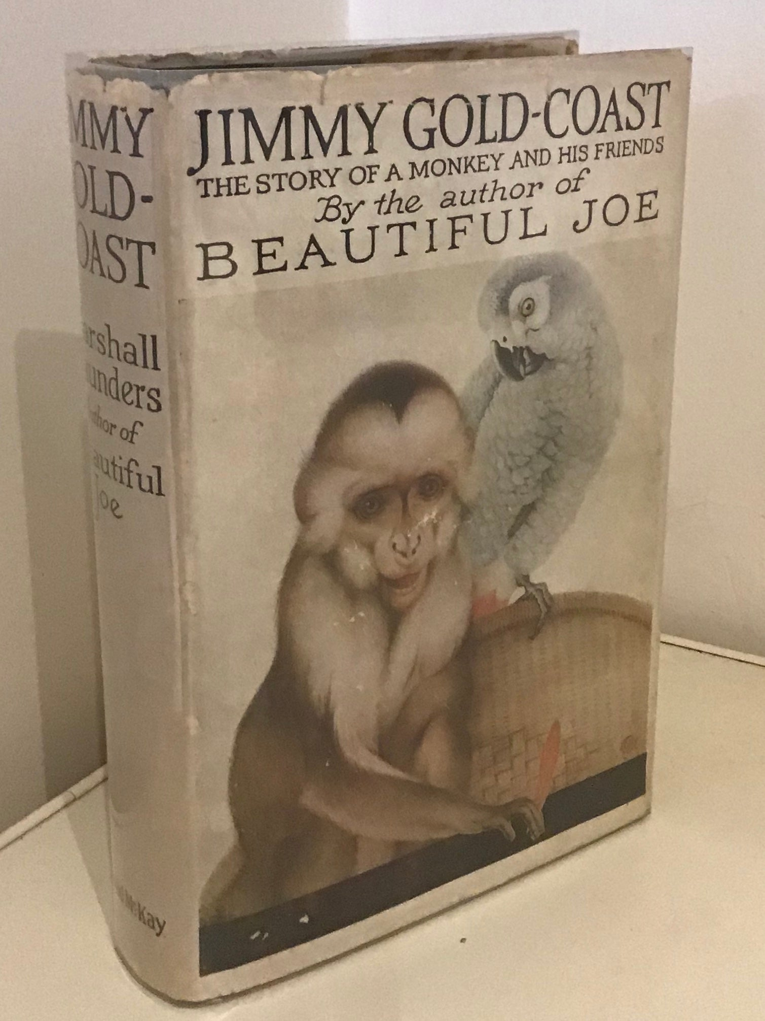 Jimmy Gold-Coast; The Story of a Monkey and his Friends