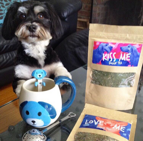 Kiss Me Doggie Tea