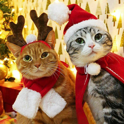 Christmas Cat Costumes Xmas Sumait
