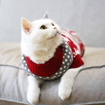 Cute Sweater for Cat Sumait 6 Red