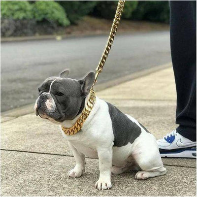 Stainless Steel Dog Chain Pet Puppy Dog Walking Training Lead Leash 美与高