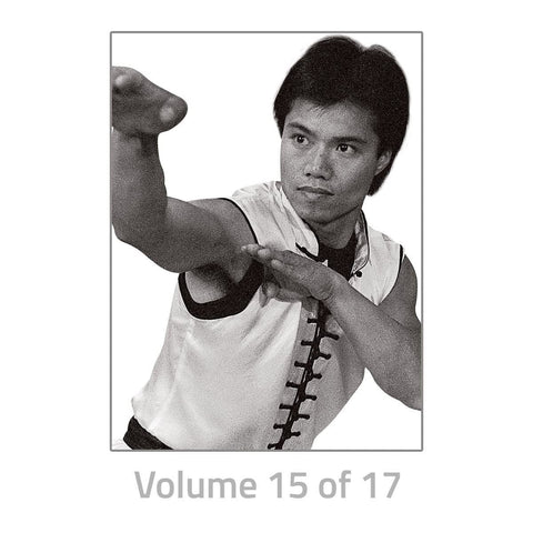 Choy Lay Fut Kung Fu Training DVDs FUTD - BlackBeltShop