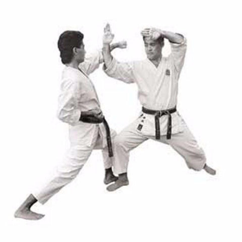 Master Kenneth Funakoshis Shotokan Karate Series Titles - BlackBeltShop