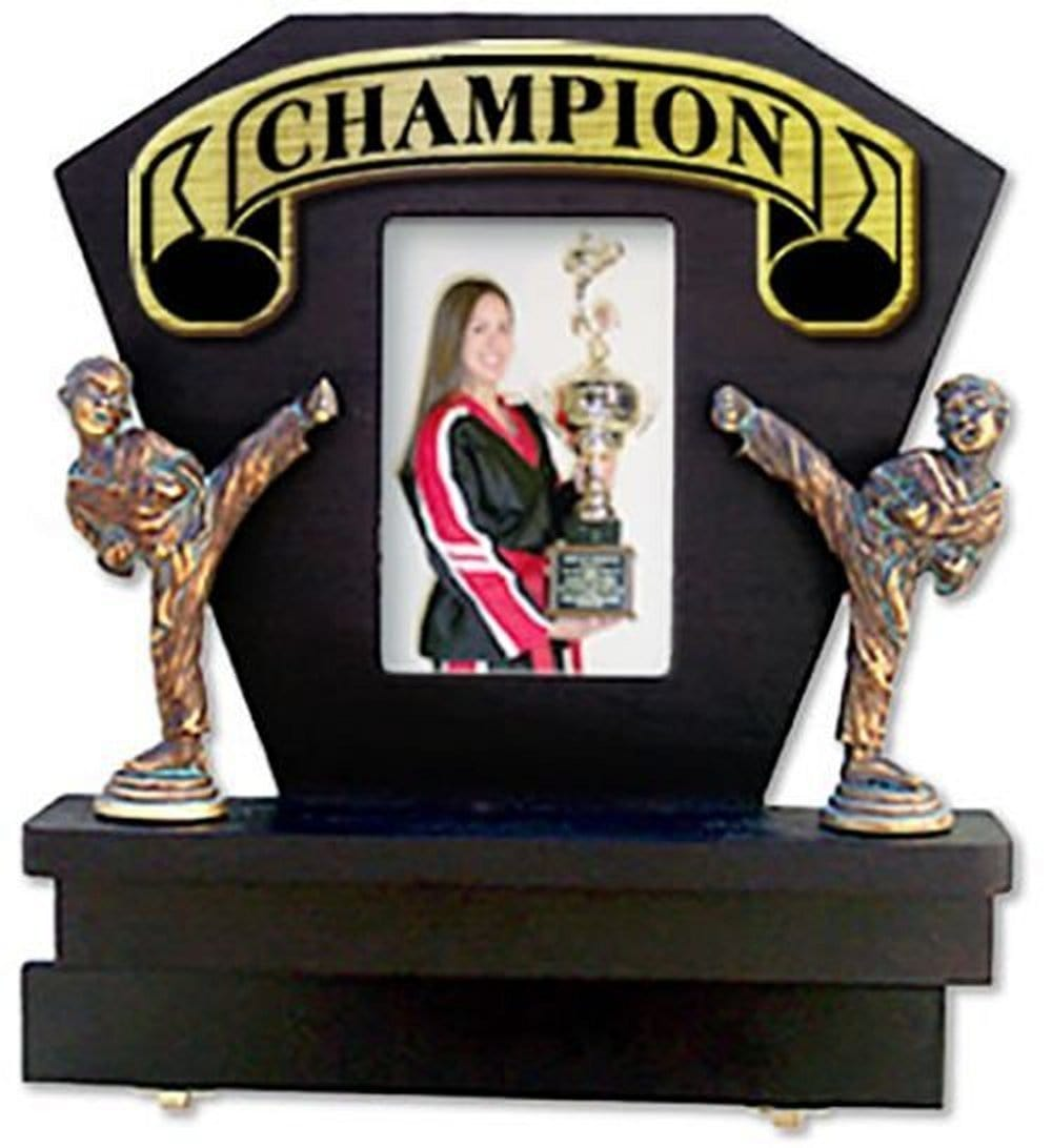 Deluxe Picture Frame & Ranking Belt Display - BlackBeltShop
