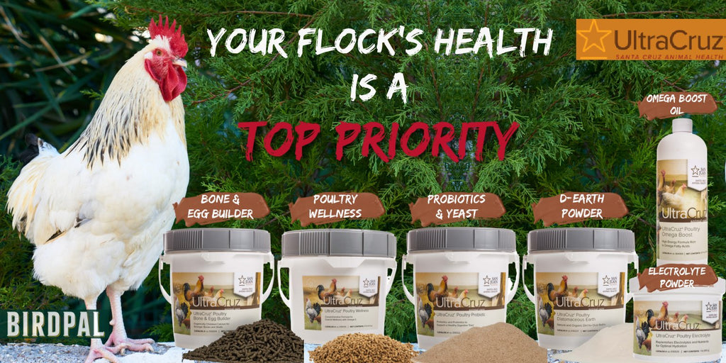 UltraCruz Poultry and Backyard Chicken health supplements
