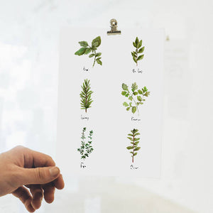 Kitchen Herb Artwork