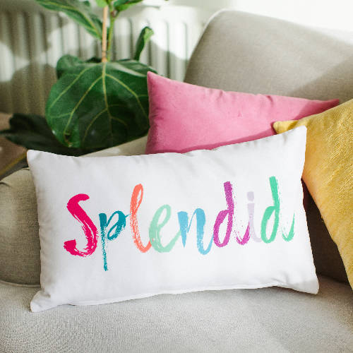 Splendid Velvet Cushion